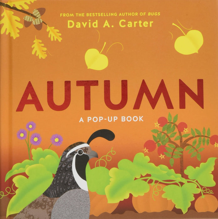 Autumn : A Pop-Up Book