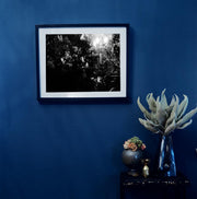 Black & White Art Print - Garden