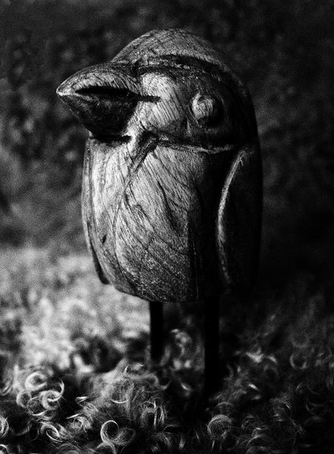 black and white photography art print - bird