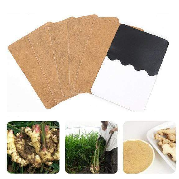 Herbal Ginger Detox Patch - esilvia