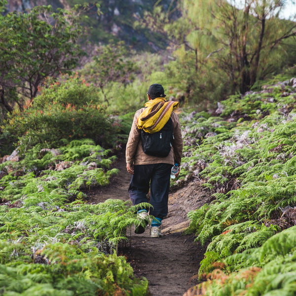 The Way by Which You Can Find the Best Routes for Your Hike