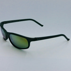 Ray Ban Sunglasses RB 2030 | Sunglasses by Ray Ban | Friedman & Sons