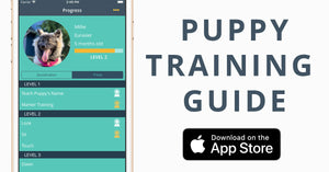 Social Puppy - Dog Training iPhone App