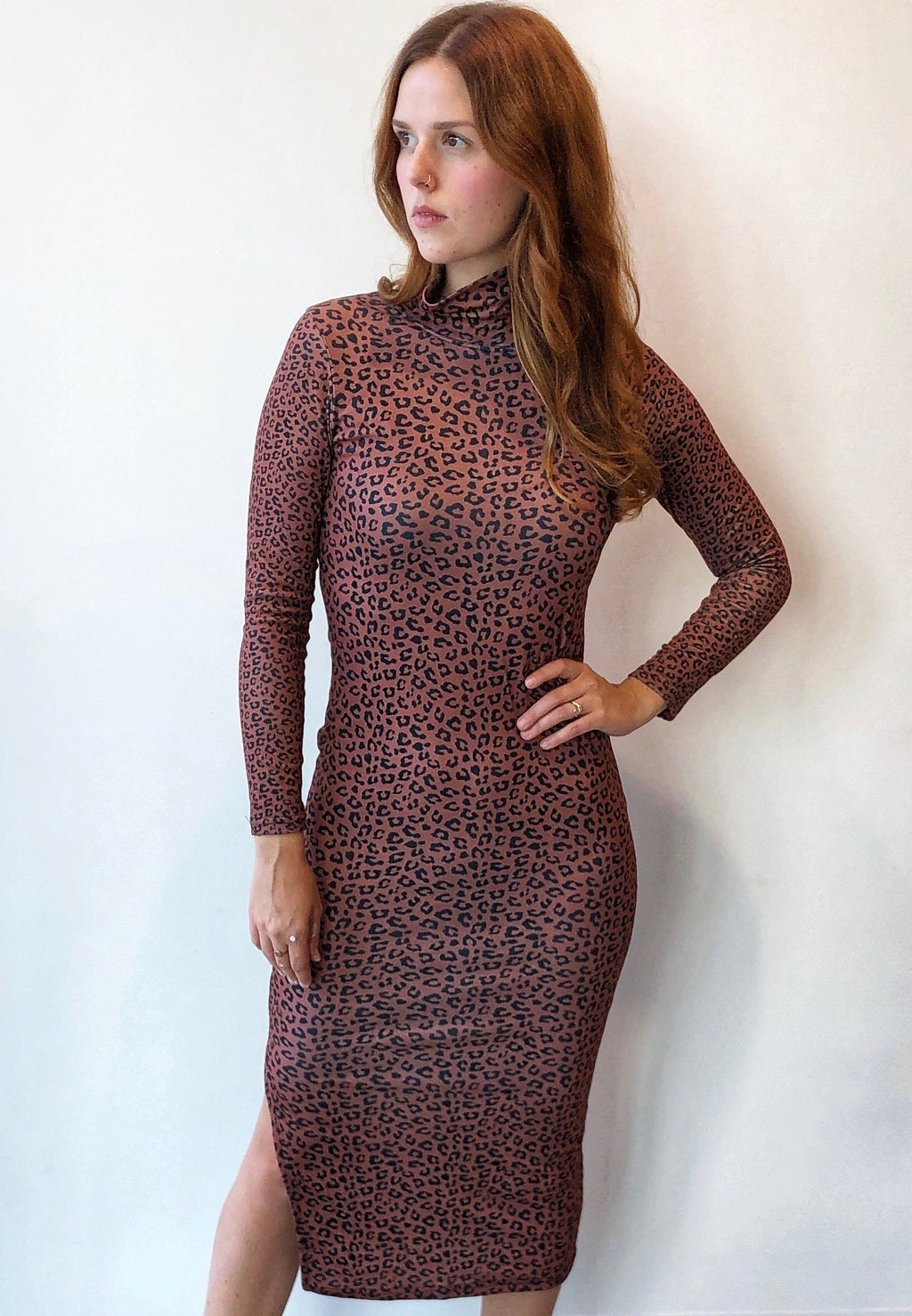 Turtleneck Leopard Dress