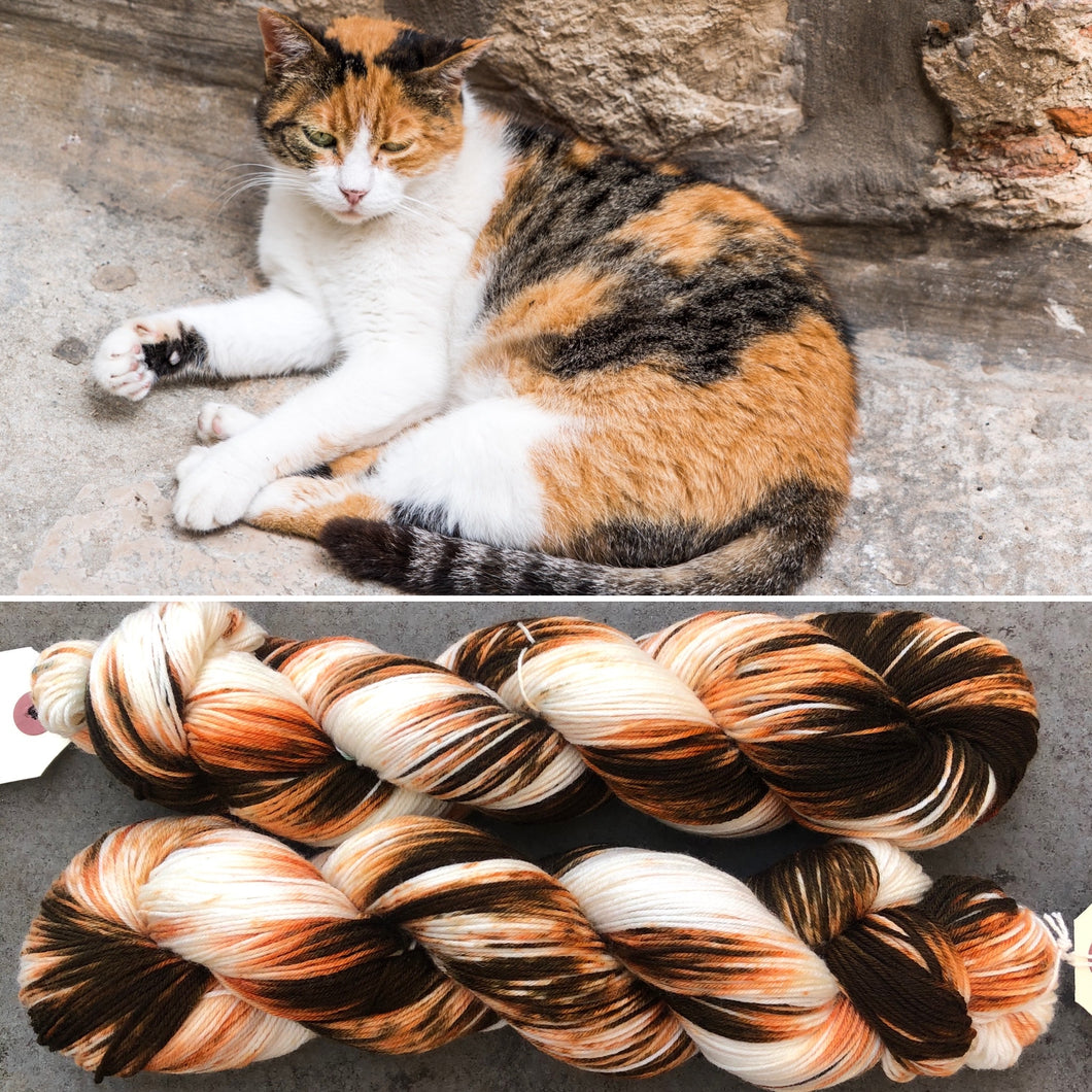 Calico Cat, merino nylon sock yarn