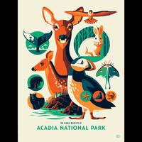 ICONIC WILDLIFE OF ACADIA screenprint