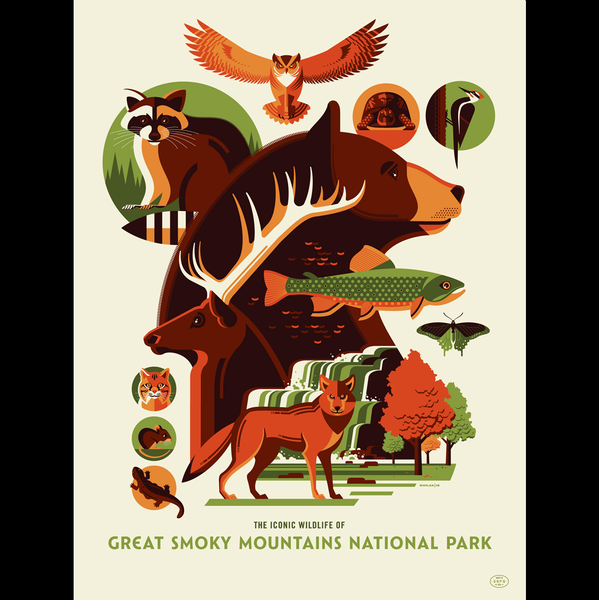 ICONIC WILDLIFE OF GREAT SMOKY MOUNTAINS screenprint