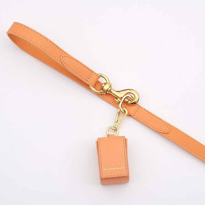 William Walker Leder Hundeleine Orange