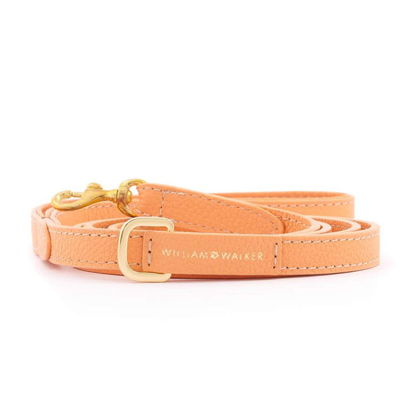 William Walker Small City Leder Hundeleine Orange