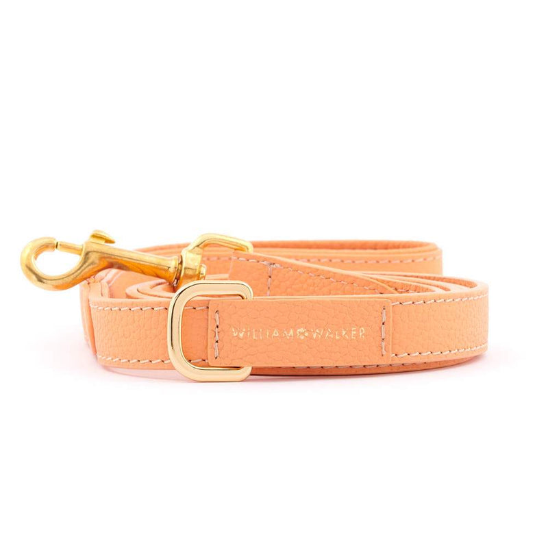 William Walker City Leder Hundeleine Orange