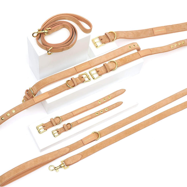 Leather Dog Leash Coral