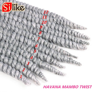 "12 Roots Afro Fat Havana Twist Crochet Braids 14"" 18"" 22"" Grey Hair Extensions Crotchet Braiding Hair 80g 1 pack by Silike"