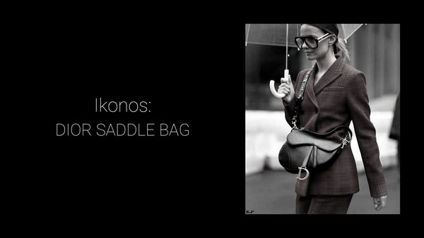 Ikonos: Dior Saddle bag