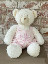 "Load image into Gallery viewer, 18"" personalized teddy bear (pink, blue)"