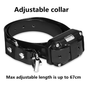 Dog Training Collar - www.theknickknackstore.com