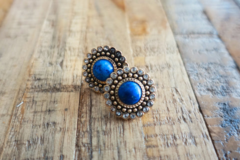 Regal Blue Stud Earrings