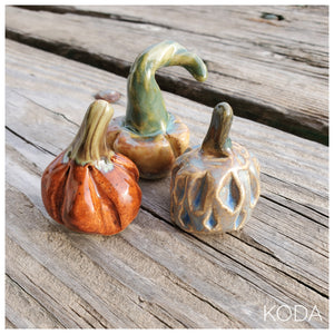 Set of 3 MINI Pumpkins 014