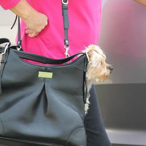Black Dog Carry Bag for chow chow, french bulldog malta