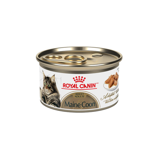 Royal Canin Conserve Chat Maine Coon Tranches