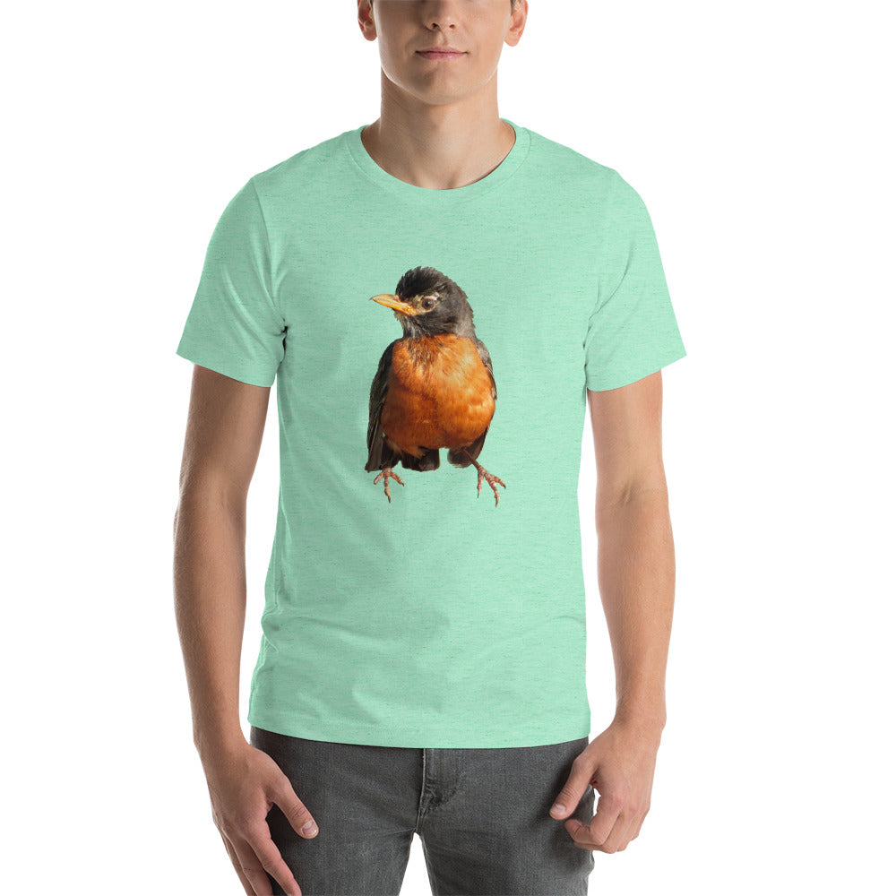 Robin Redbreast T-shirt spectacular coloring Many styles, sizes and colors.