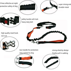 Waist Elastic Dog Leash - Fox Hike Hiking Gear Outdoor Trekking Survival