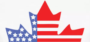 12 Benefits of Buying Online from Canada to USA