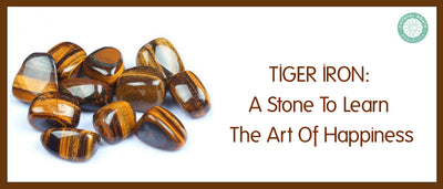 Tiger Iron: A Stone To Learn The Art Of Happiness
