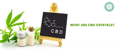 What are CBD crystals?