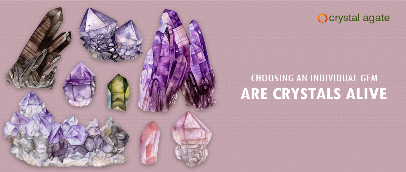 ARE CRYSTALS ALIVE?