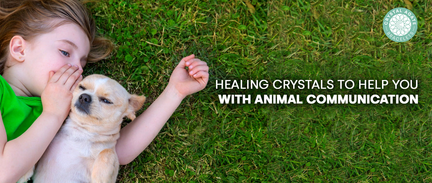 Healing Crystals To Help You With Animal Communication