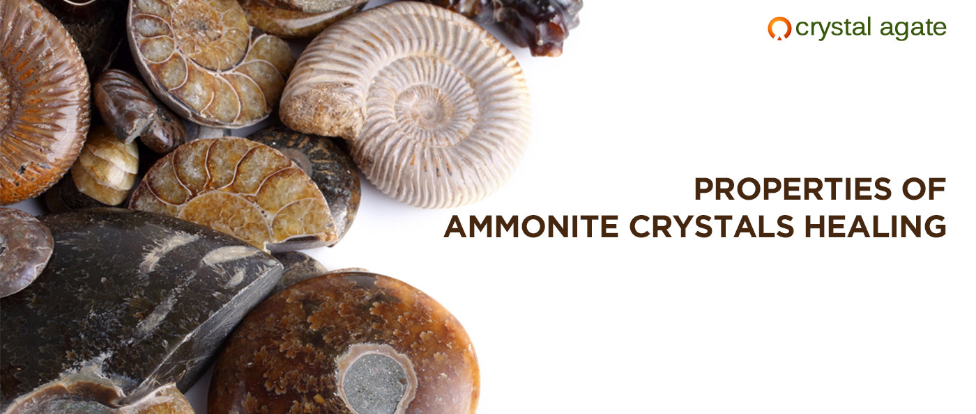 Properties of Ammonite Crystals Healing