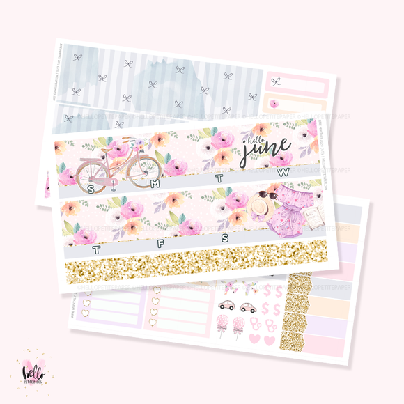 2020 June Monthly Sticker Kit (optional foil)