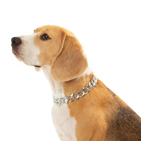 Silver Dog Chain Necklace