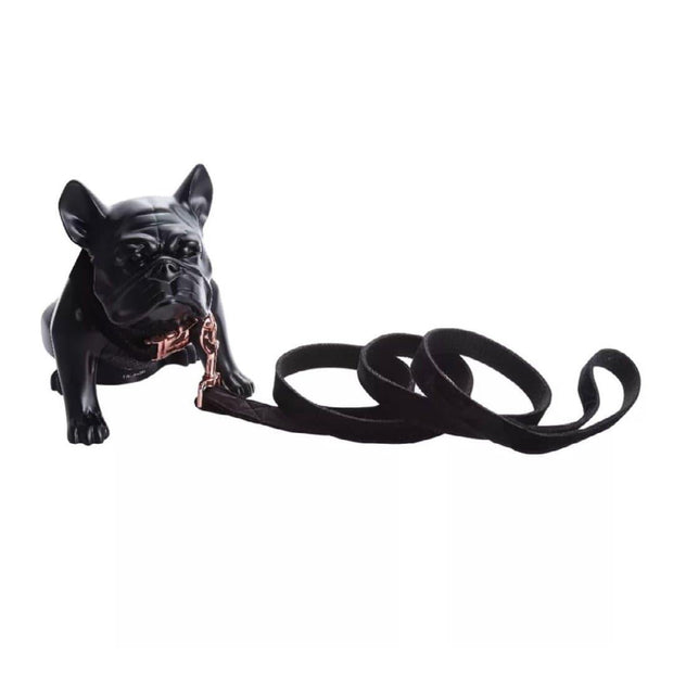 Black Velvet Dog Collar and Leash Set