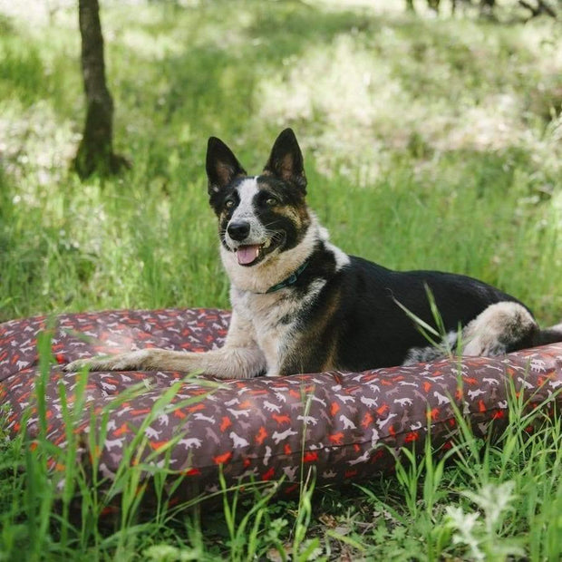 Scout & About Outdoor Dog Bed