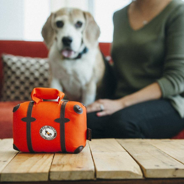 Globetrotter - Pack and Snack Suitcase Dog Toy