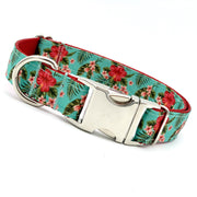 Dog Collars - Hibiscus Blooms Flower Dog Collar