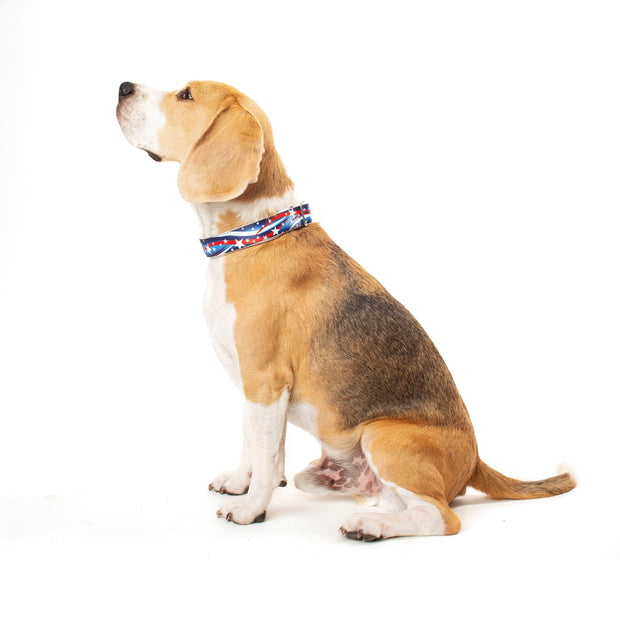 Dog Collars - Stars & Stripes USA Dog Collar