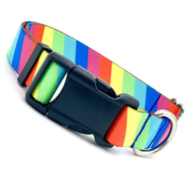 Dog Collars - Striped Rainbow Dog Collar
