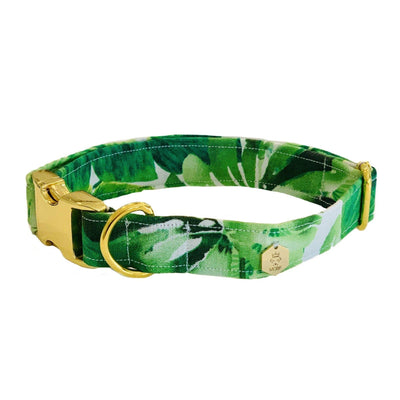 Dog Collars - The California Palm Tree Dog Collar