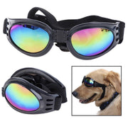 Dog Lifestyle - Sun Doggles - Foldable Dog Goggles