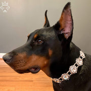 Pet Jewelry - The Crown - Rhinestone Large Dog Collar Necklace
