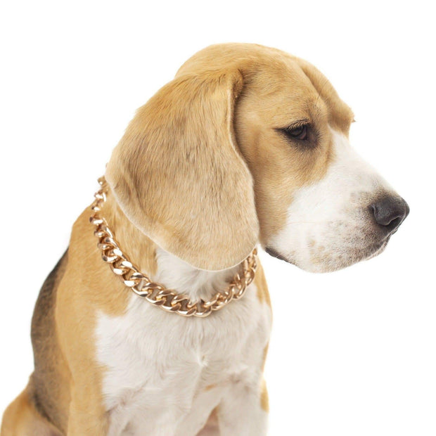 Pet Jewelry - The Notorious D.O.G. Rose Gold Pet Chain Necklace