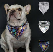 Pet Lifestyle - Color Changing Holographic Pet Bandana