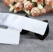 Pet Lifestyle - Formal Black Bow Tie Pet Collar