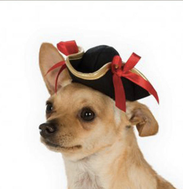 Pet Lifestyle - Ladies Pirate Dog Hat