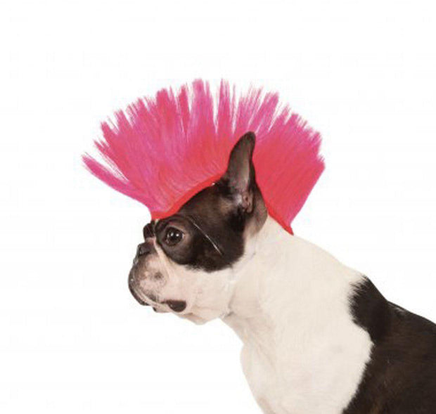 Pet Lifestyle - Mohawk Dog Wig