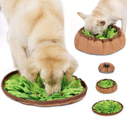 Pet Lifestyle - Nose Work Snuffle Mat Interactive Feeding Toy