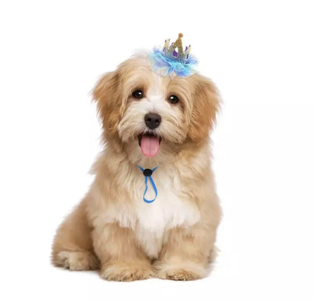 Pet Lifestyle - Pet Birthday Crown For Dogs And Cats