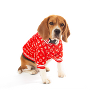 Pet Lifestyle - Pupreme Satin Athletic Bomber Pet Jacket